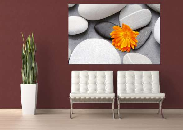 Фотообои бумажные W+G Giant Art A Heart among Stones 00678WG